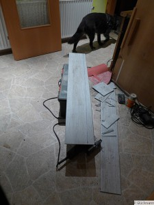 Rupi hat keinen Bock mehr auf Baustelle