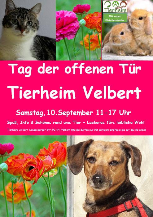 Tierheim Velbert: Tag der offenen Tür
